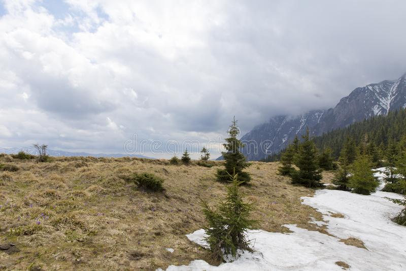 View of the Bucsoiu mountain from Carpati mountains. Romania stock photography