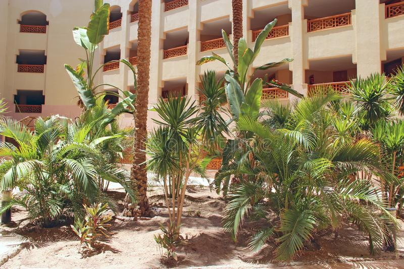 View of building of resort with palm trees. Egyptian resort. Tropical holidays. Hotel building with balconies. Modern arabic architecture. Date palms growing stock image
