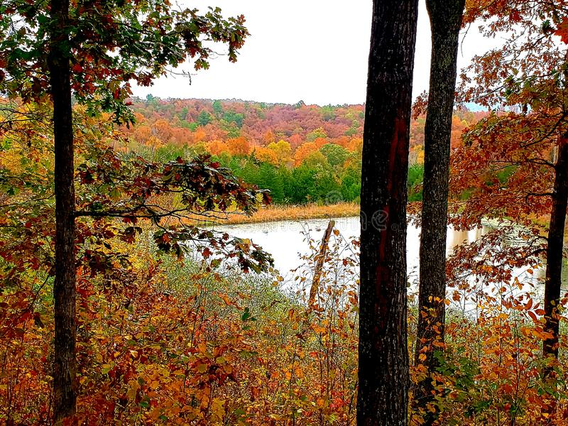 View from a cabin southern missouri fall royalty free stock photo