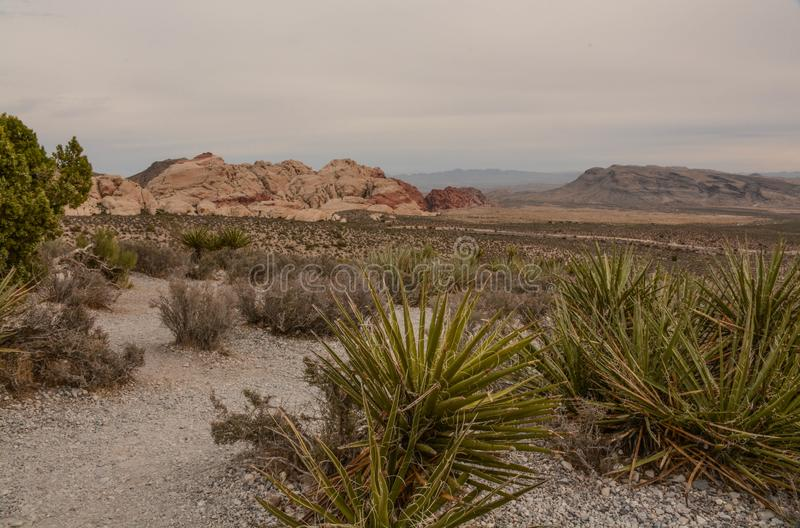 A View From the Canyon Floor. At Red Rock Canyon near Las Vegas, Nevada stock photography