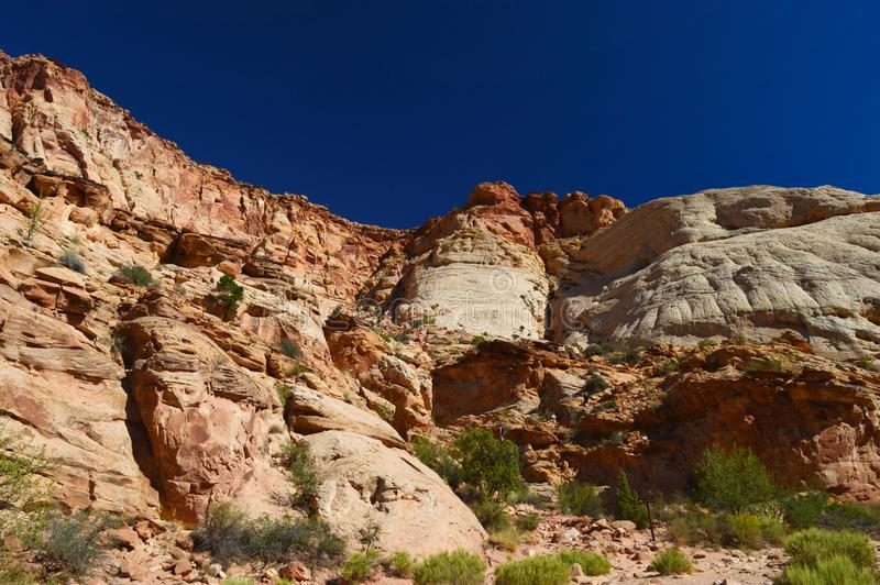 View at Capitol Reef National park royalty free stock images