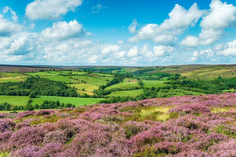 The view from Castleton in the North York Moors. Looking out to Commondale Moor royalty free stock photos
