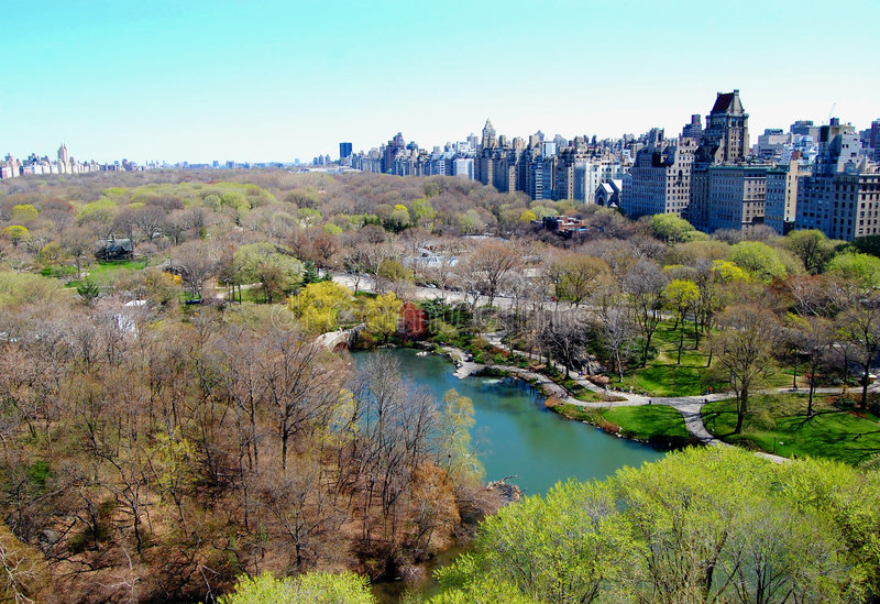View of Central Park and New York City royalty free stock image