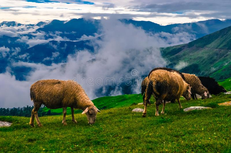 View of The Chanshal Valley. stock photography
