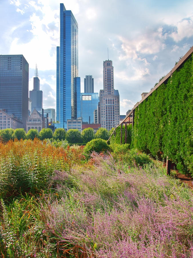 Download View Of Chicago From Grant Park Stock Image - Image: 22466393
