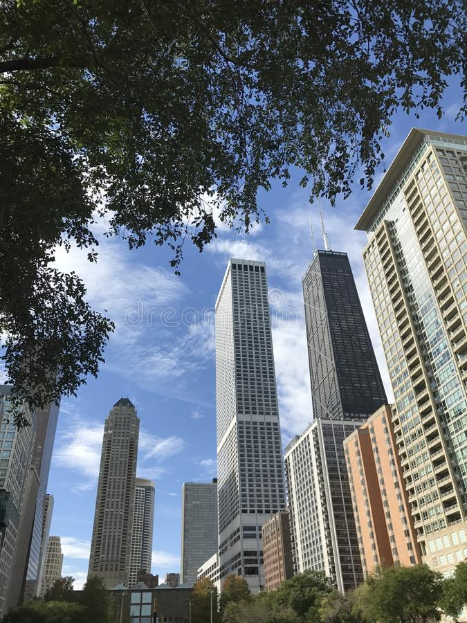 Chicago Skyscrapers royalty free stock photos