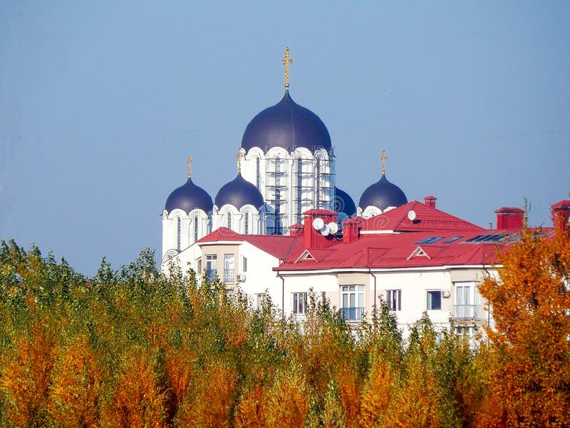 View on the church and forest royalty free stock photography
