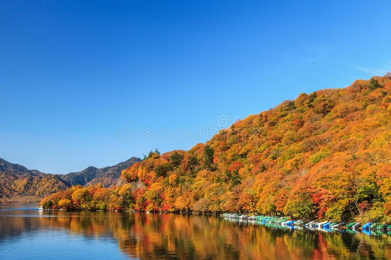 View of Chuzenji lake in autumn season with reflection water in royalty free stock images