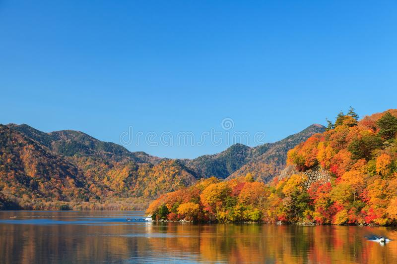 View of Chuzenji lake in autumn season with reflection water in stock images