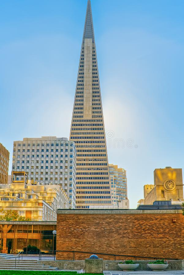 View of the city center,tower skyscraper TransAmerica, downtown of San Francisco royalty free stock photography