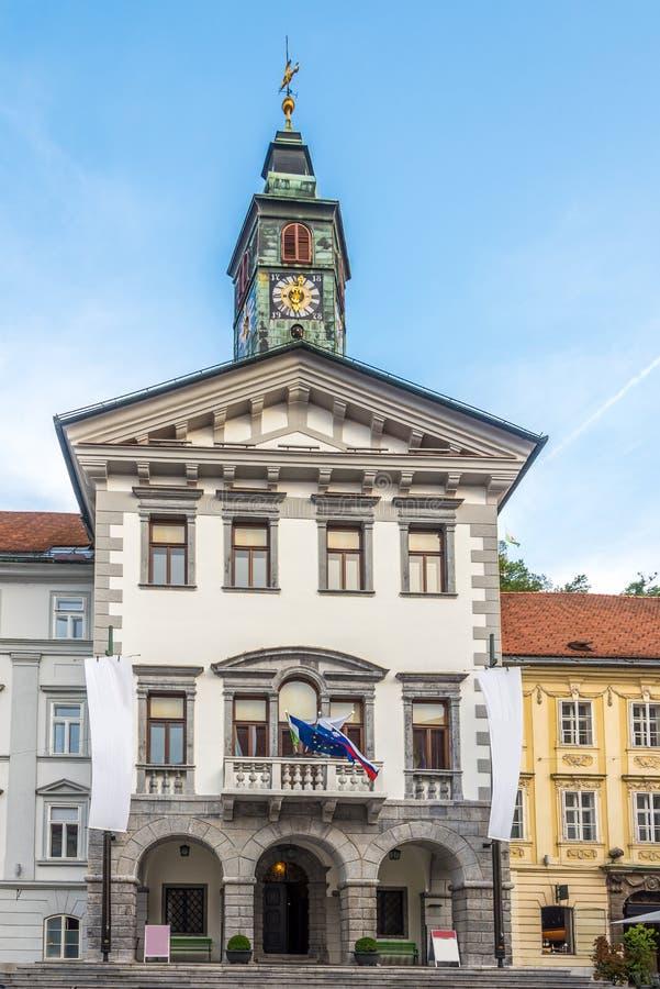 View at the City hall of Ljubljana in Slovenia. View at the City hall of Ljubljana - Slovenia stock photos