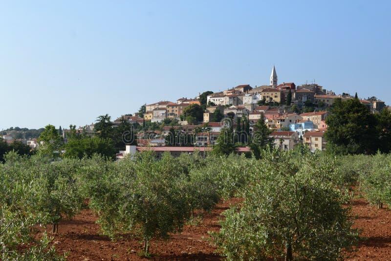 Vrsar city in Croatia royalty free stock image