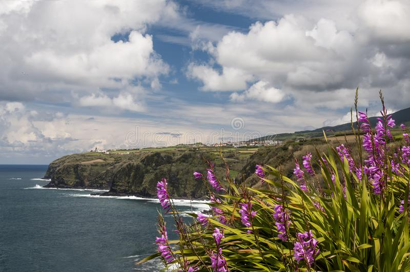 View on the cliffs from the Miraduro da Rocha, Azores stock photography