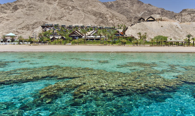 View on coral reef near Eilat, Israel royalty free stock images