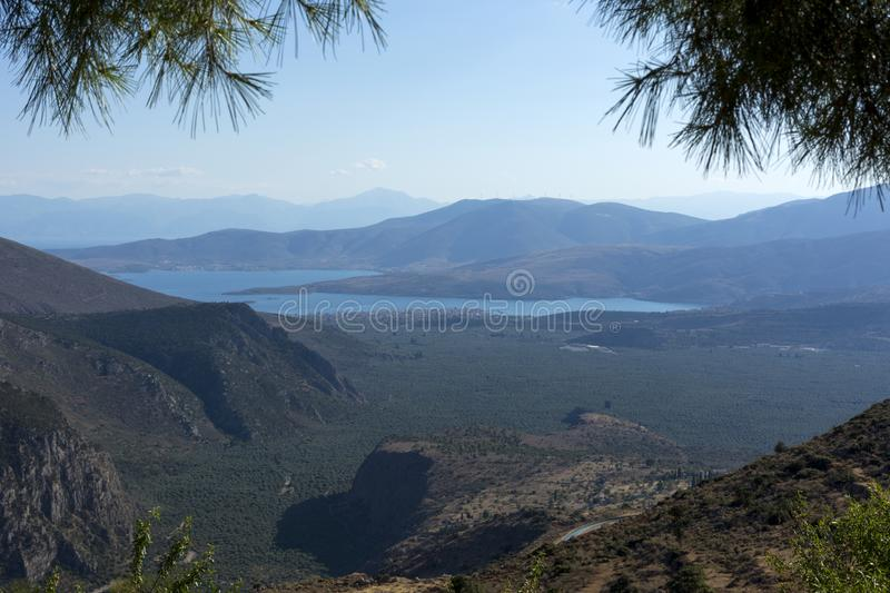 View of the Corinthian Gulf, olive grove, Peloponnese, Greece, l. View of Corinthian Gulf and the olive grove, mountains, you can see the coast of the royalty free stock images