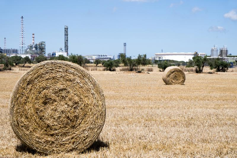 Crop field with straw bales after harvesting stock photo