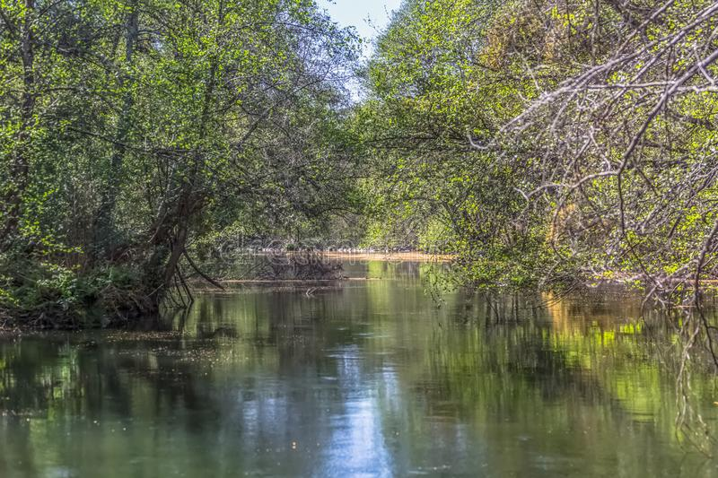 View of DÃo river, with trees, rocks and vegetation on the banks, reflections in the water and bright colors. View of Dão river, with trees, rocks and stock photos
