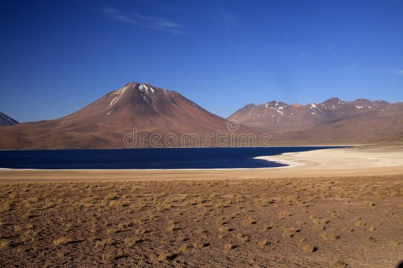 View on deep blue lake at Altiplanic Laguna Lagoon Miscanti in Atacama desert with partly snow capped cone of volcano. Meniques in the background - Chile stock photos
