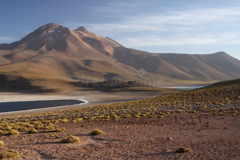 View on deep blue lake at Altiplanic Laguna Lagoon Miscanti in Atacama desert with partly snow capped cone of volcano. Meniques in the background - Chile royalty free stock photos