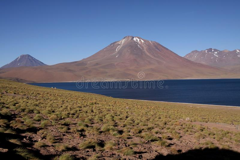 View on deep blue lake at Altiplanic Laguna Lagoon Miscanti in Atacama desert with partly snow capped cone. Of volcano Meniques in the background - Chile stock photos
