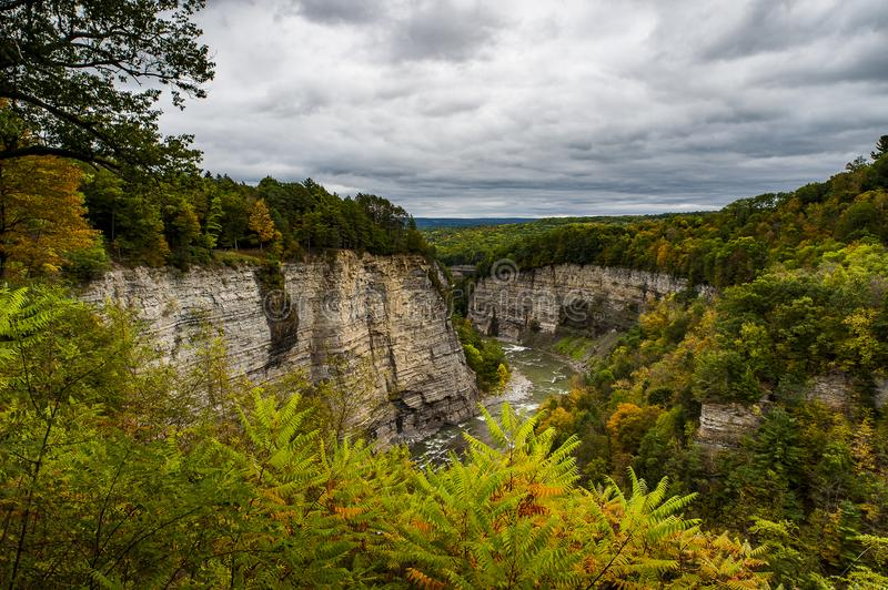 Canyon Views on Cloudy Afternoon - Letchworth State Park - New York stock images