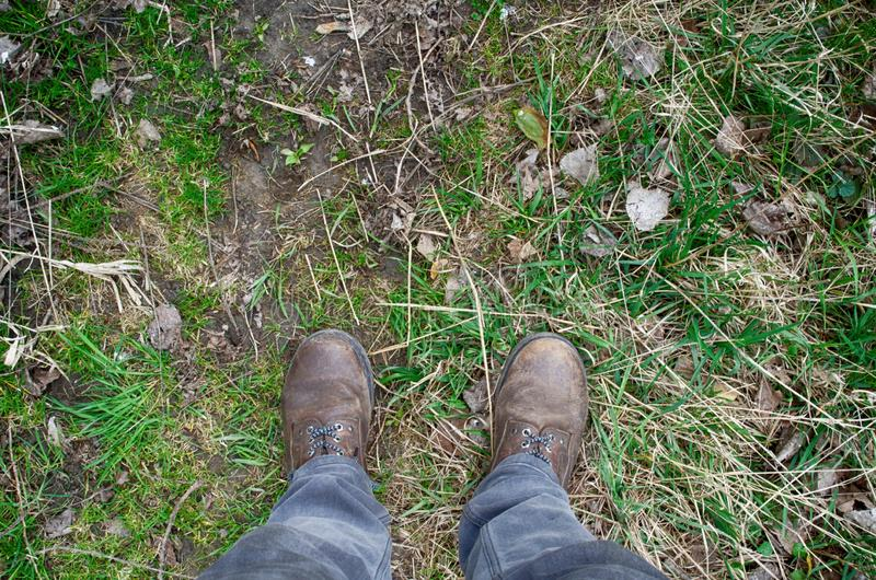 View of dirty shoes on grass - saturated colors. View of dirty shoes on grass ground - saturated colors stock photo