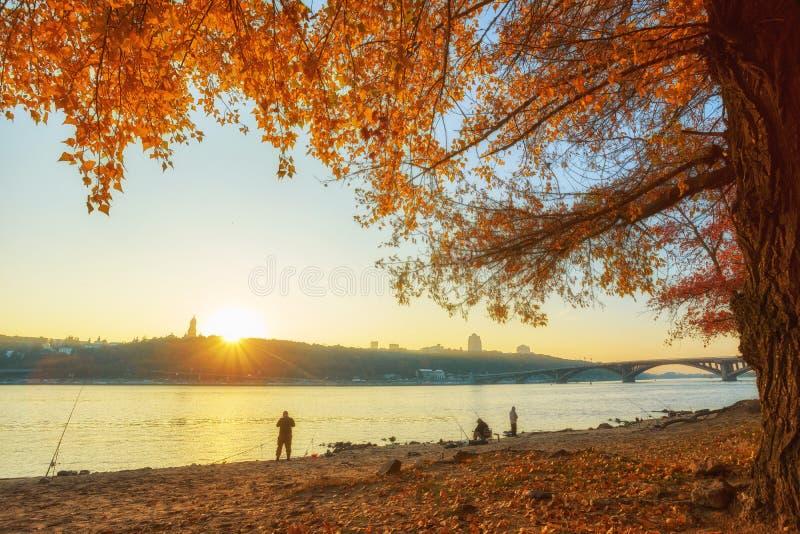 View of Dnieper river in Kiev. Ukraine, autumn, beach, kyiv, landscape, reflection, travel, water, city, coast, coastline, color, dnepr, europe, forest, island royalty free stock photos