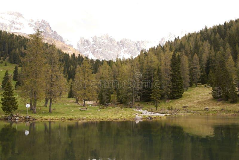 View of a Dolomiti lake. San Pellegrino, Italy - April 06, 2013: Dolomiti mountains lake stock images