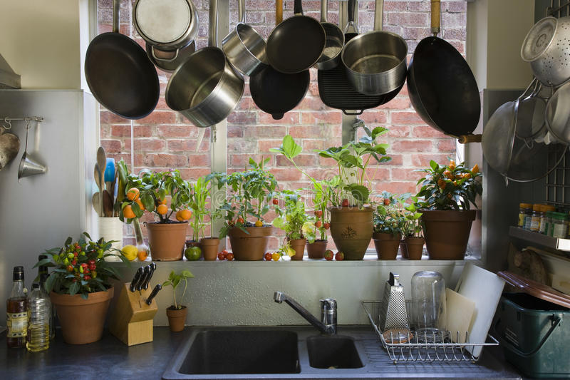 View Of Domestic Kitchen. Saucepans hanging over sink against potted plants on window sill in domestic kitchen stock image