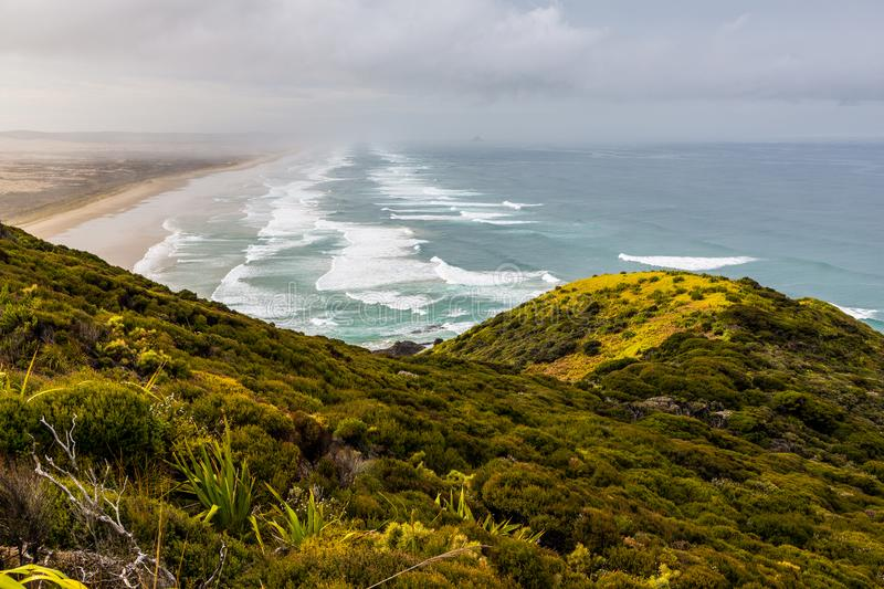 Looking down 90 Mile Beach, Northland. A view down 90 Mile Beach on New Zealand`s north island, Northland stock photos