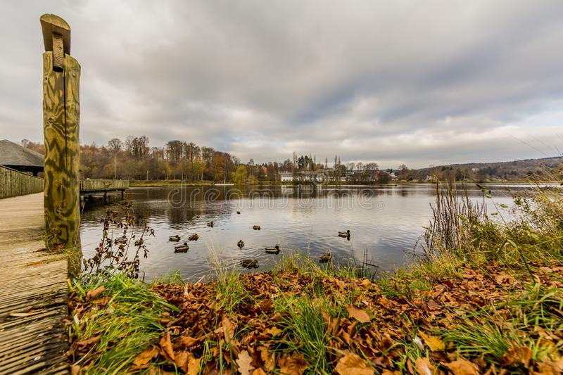 View of the Doyards Lake with ducks in Vielsalm. Amazing view of the Doyards Lake with ducks in Vielsalm on a beautiful and cloudy autumn day in the Belgian stock photo