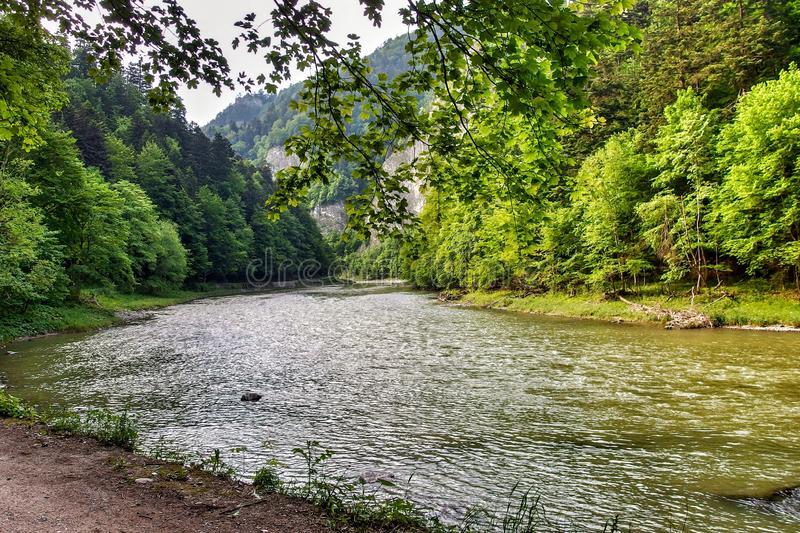Dunajec river in Pieniny National Park in southern Poland. stock photo