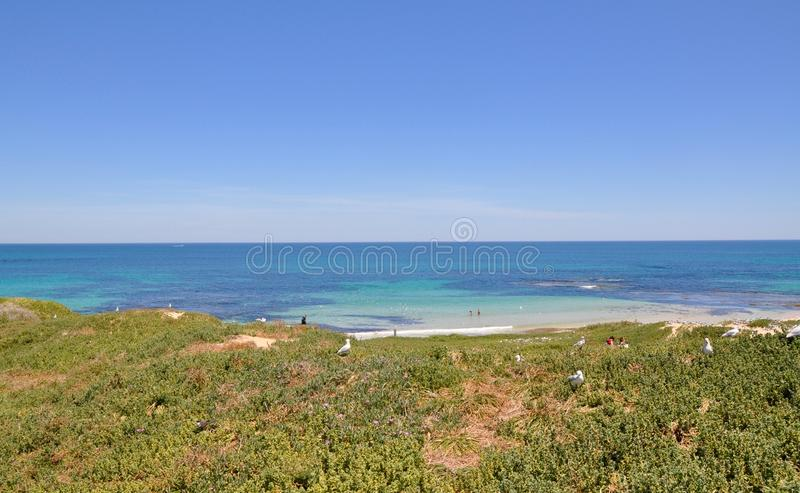 View from the Dunes royalty free stock photo