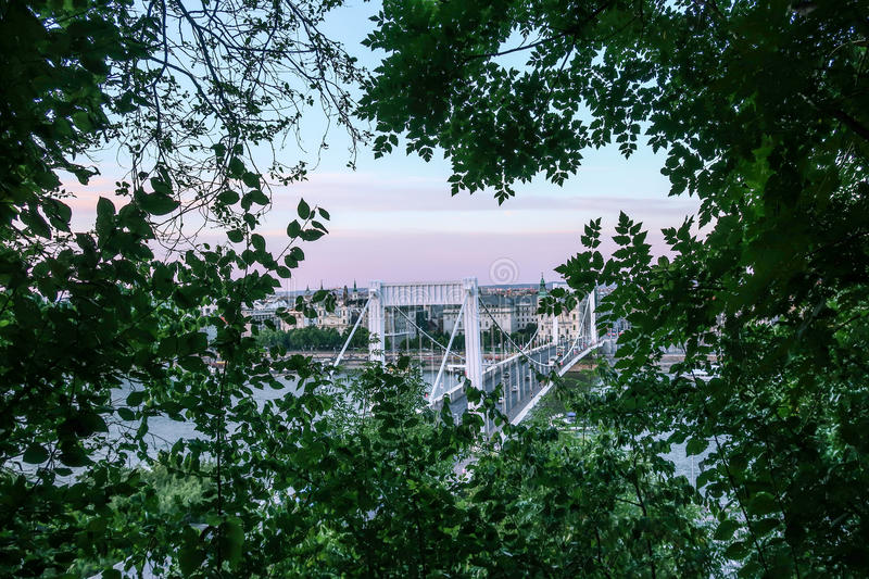 View of Eizabeth Bridge in Budapest Through Trees royalty free stock photography