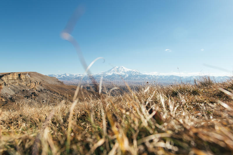 View on the elbrus throw the grass stock photo