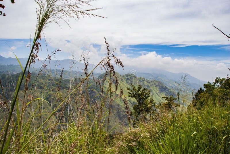 View from Ella rock over little adam`s peak in Sri Lanka stock images
