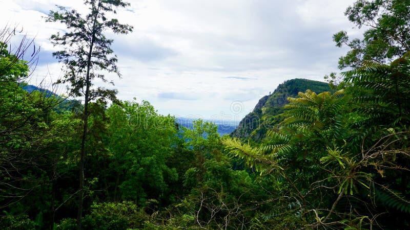 View of the Ella rock, Sri Lanka stock image