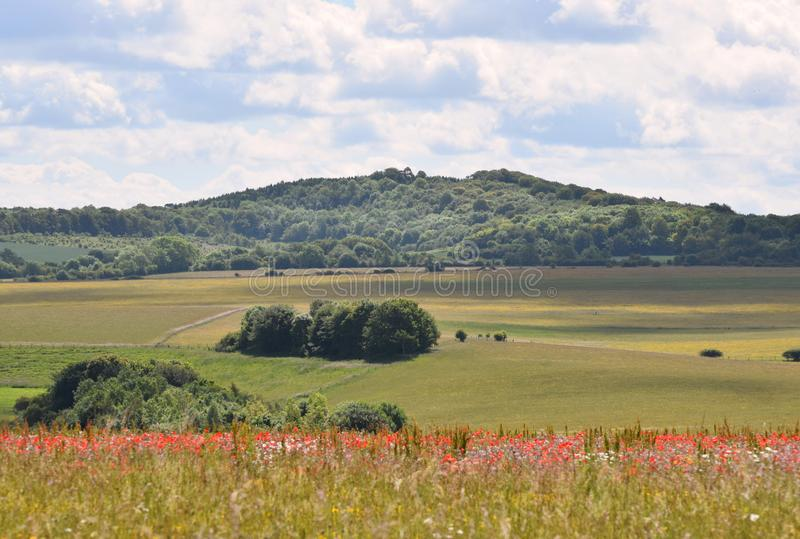 English Countryside view with wild flowers and poppies. A view of the english countryside in June with wild flowers, poppies, meadows, fields, hills and forests royalty free stock photo