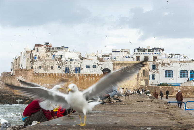 View on Essaouira royalty free stock images