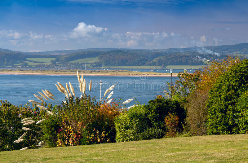 View of the estuary Exe River. Shrub the Pampas in the foreground. Green lawn. Exmouth. Devon. UK royalty free stock image