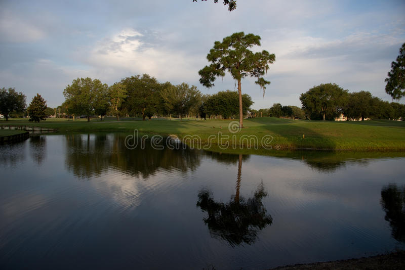 Download View of a fairway stock photo. Image of fairway, landscape - 40777386