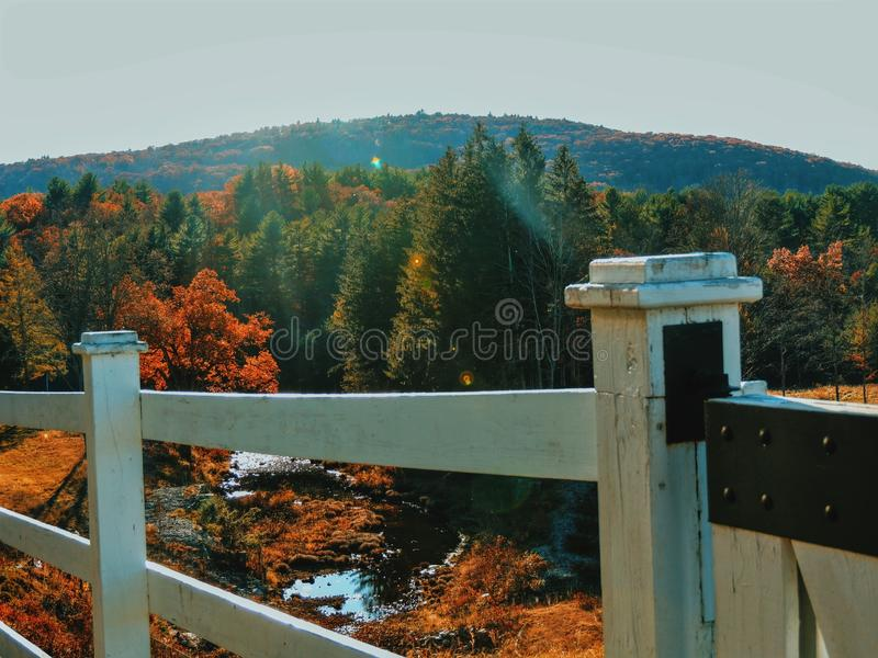 The view royalty free stock photography