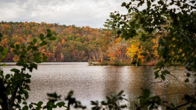 View of Fall Leaves on Lake 02 stock photos