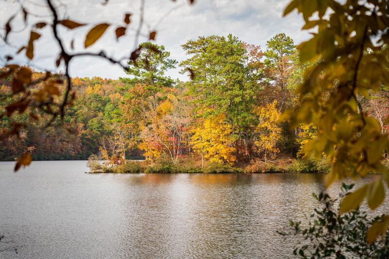 View of Fall Leaves on Lake royalty free stock photo