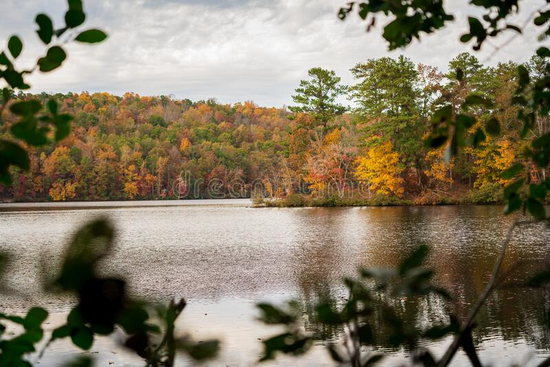 View of Fall Leaves on Lake 03 stock photos