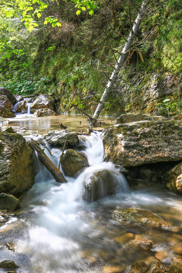 View of the falls in the Pieniny Mountain in Poland. View of the waterfalls in the Pieniny mountain reserve in Poland royalty free stock images