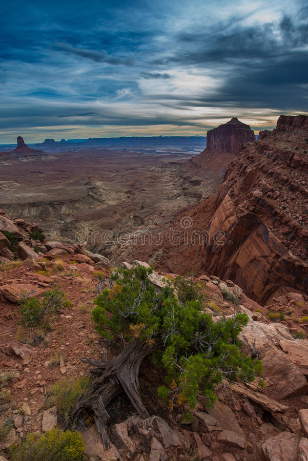 View from the False Kiva Trail stock images
