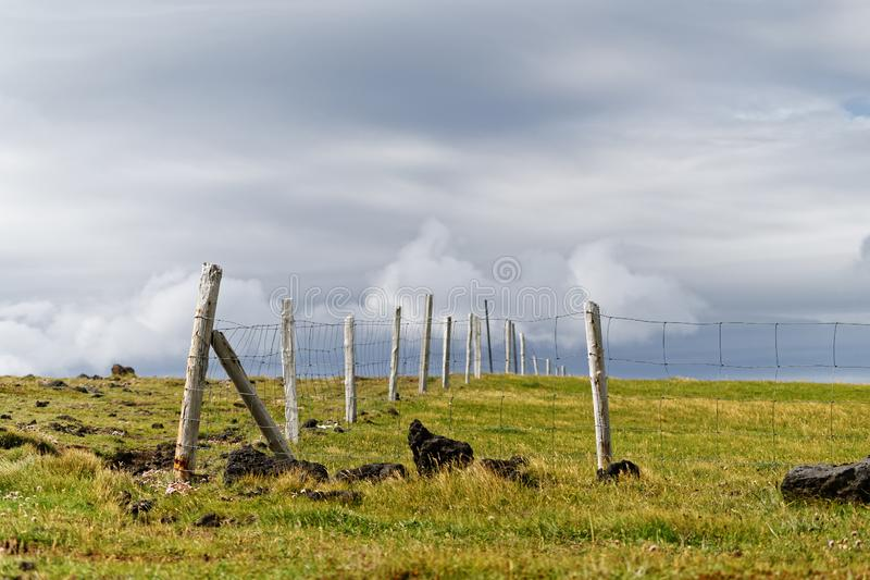Fenced meadow in front of a high contrast cloudy sky stock photography