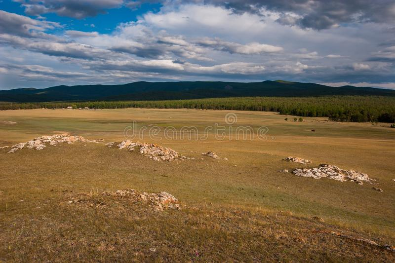 View of a field with stones and a forest with hills. royalty free stock image