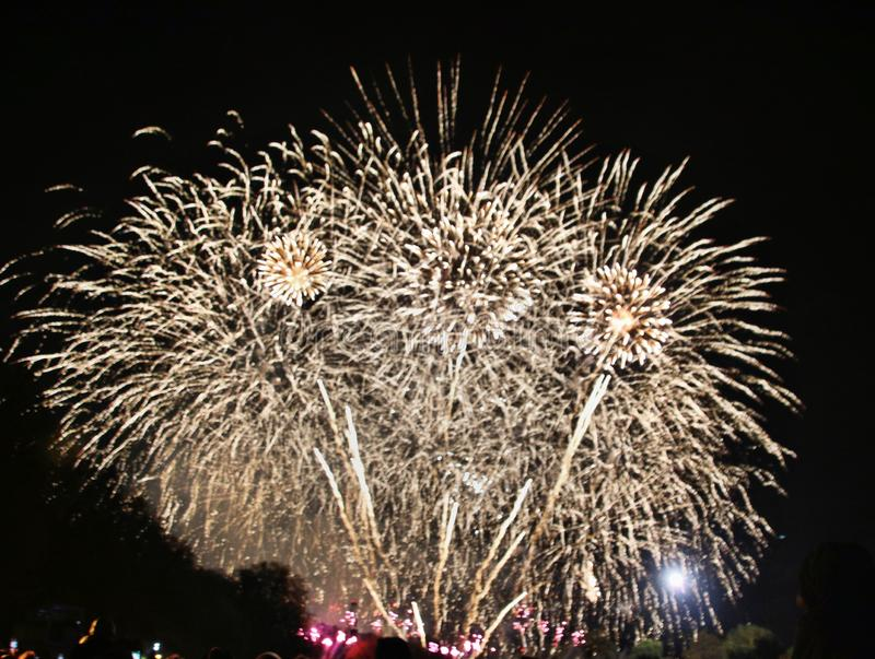 A view of a Firework Display royalty free stock photography